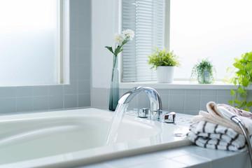 bathroom bathtub faucet